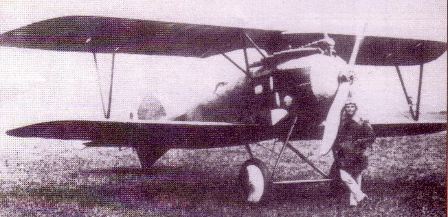 Oeffag D.III serii253, rok 1918