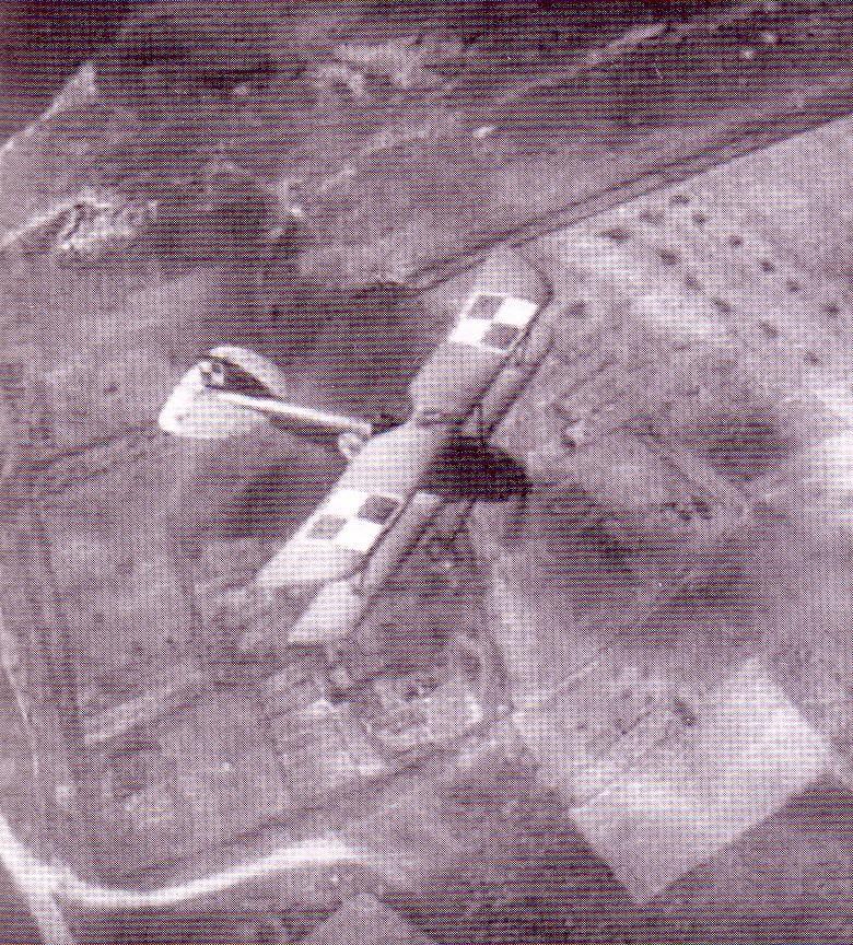 Oeffag D.III w locie